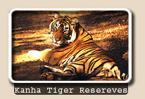 Kanha Tiger Resereves